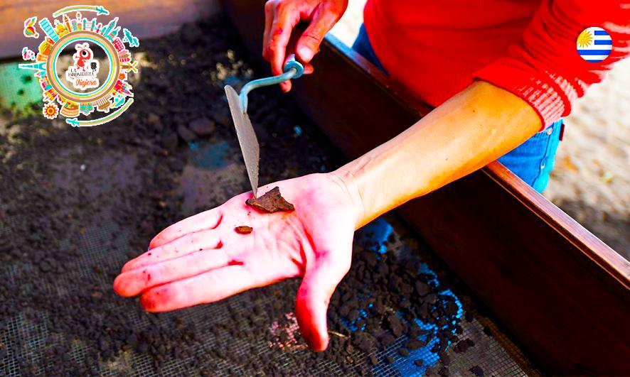 Un pedazo de cerámica hallado en la Mansa. Encontraron varios objetos pulidos (AFP)