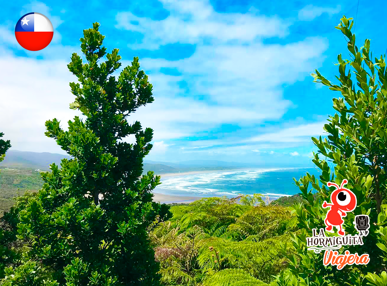 Vista desde el mirador en trekking a Cole Cole - Isla Chiloé - Enero 2018.