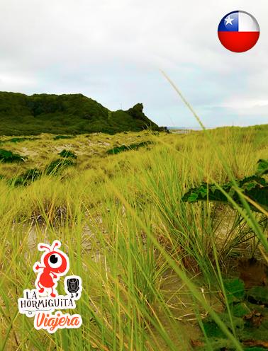 Piedra León - Inicio de la Ruta a Cole cole - Isla Chiloé - Enero 2018.
