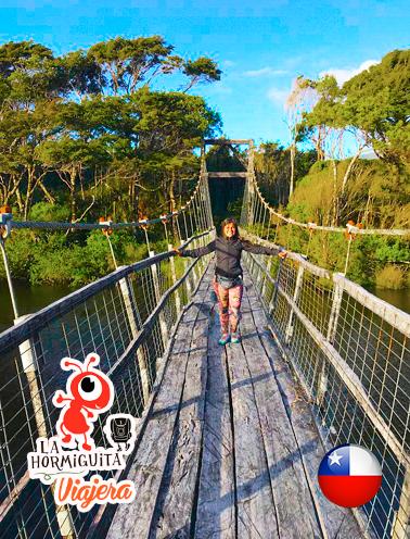 Puente colgante en el río Cole Cole, Isla Chiloé - Enero 2018.